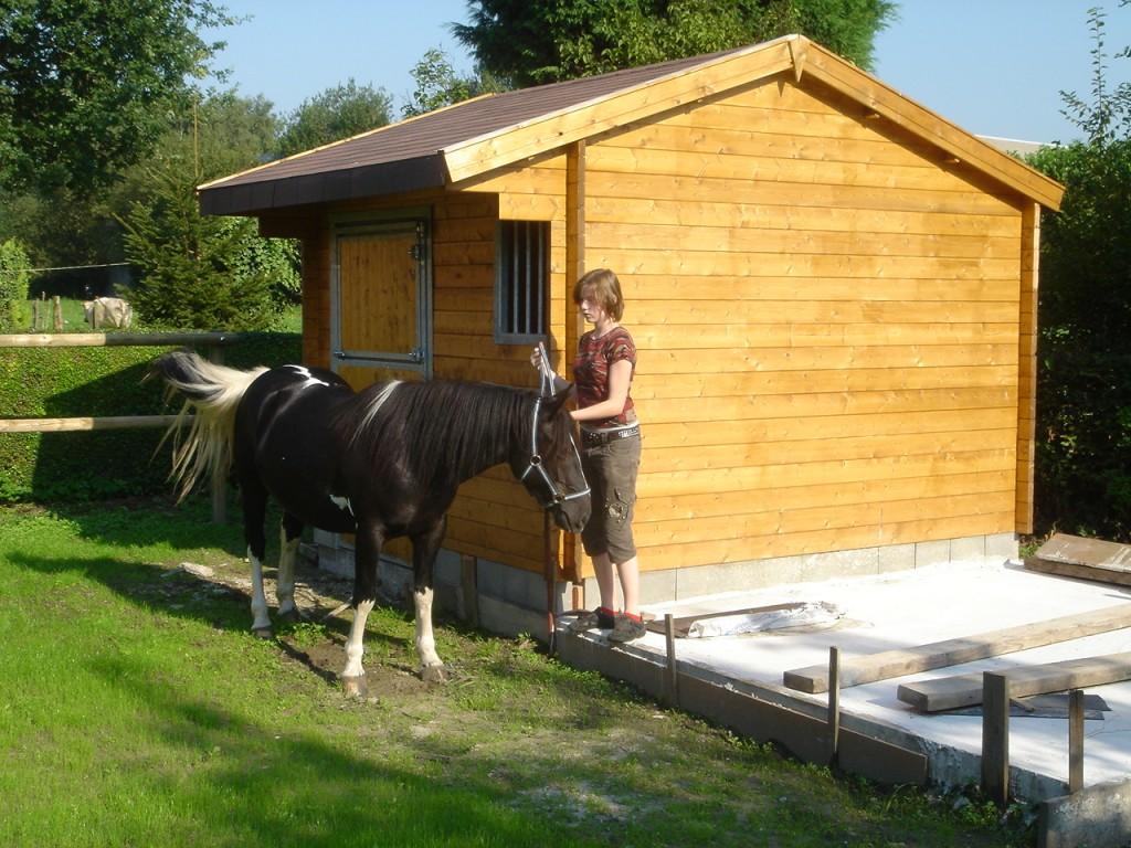 Abri pour cheval
